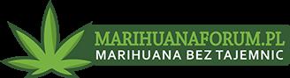 MarihuanaForum.pl | Polskojęzyczne Forum o Marihuanie